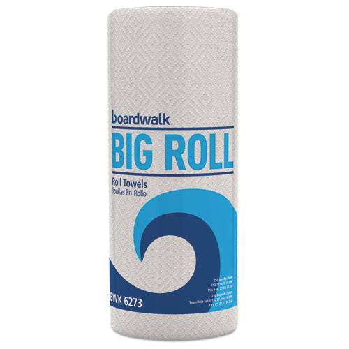 Kitchen Roll Towel, 2-Ply, 11 x 8.5, White, 250/Roll, 12 Rolls/Carton. Picture 1