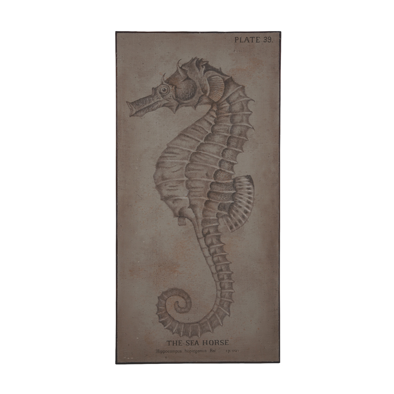 The Sea Horse. Picture 1