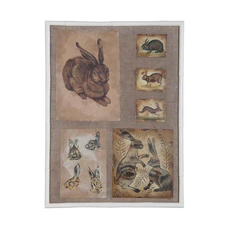 Rabbits And Hares. Picture 1
