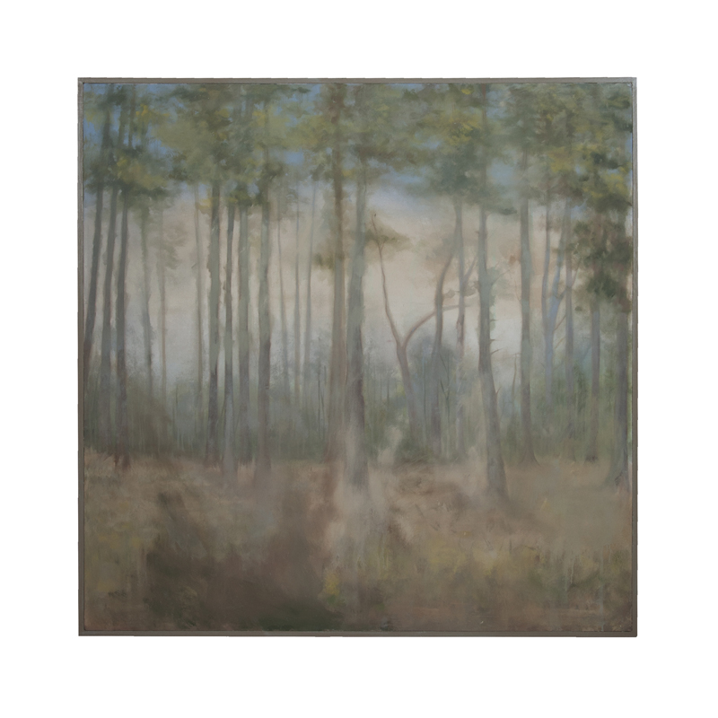 Forest. Picture 1