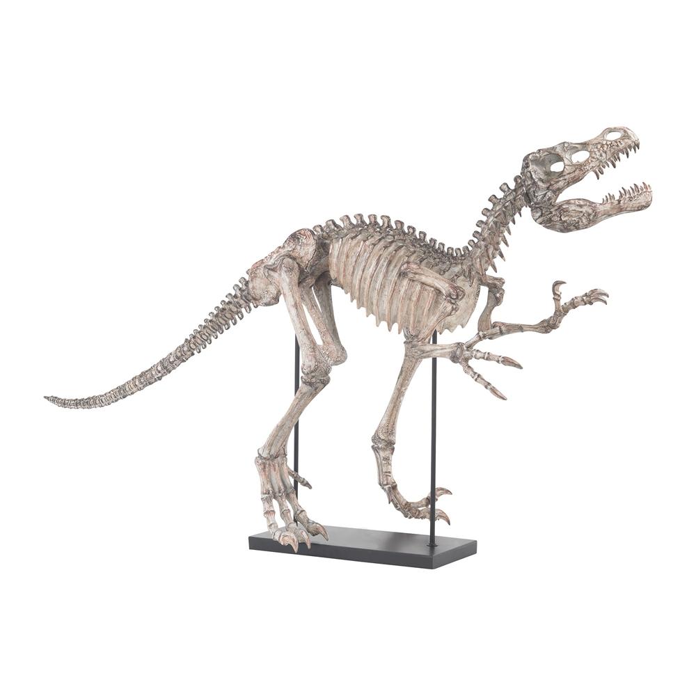 Tyrannos Dinosaur Skeleton. Picture 1
