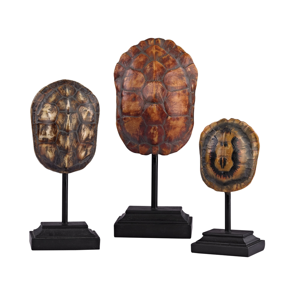 Set of 3 Turtle Shells on Stands. Picture 1