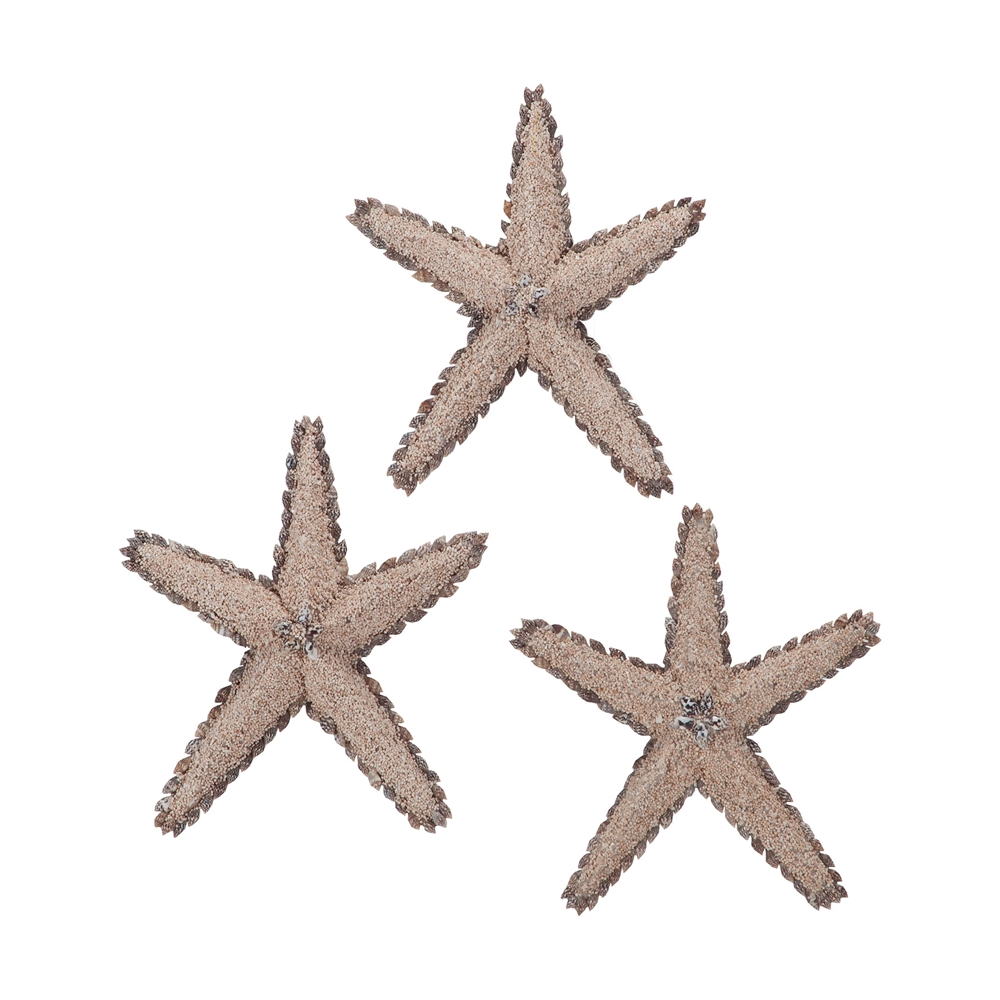 Mixed Shell Star Fish. Picture 1
