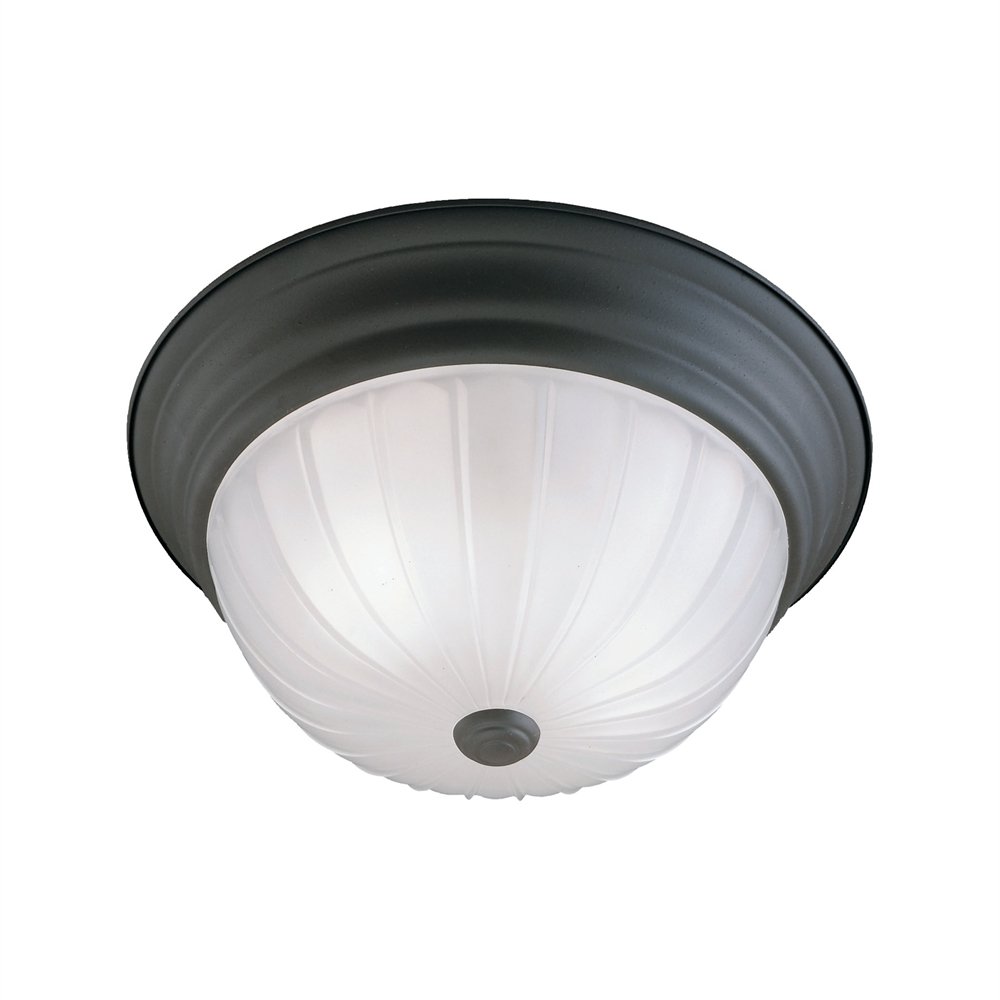 Ceiling Essentials Ceiling Lamp. Picture 1