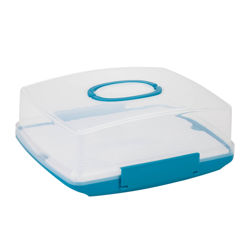 Rectangular Cake Carrier Clear White And Blue