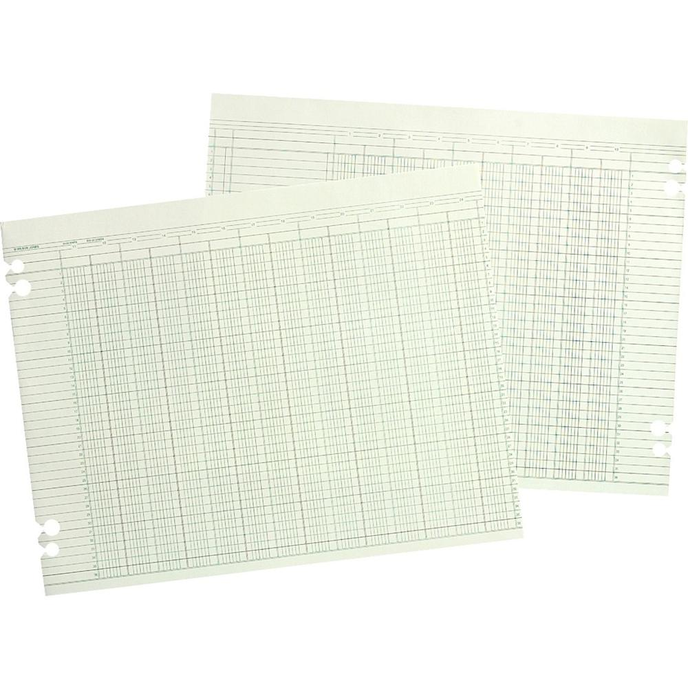 """Wilson Jones 20-Column Ruled Sheets - 24 lb - Double Sided Sheet - 14"""" x 11"""" Sheet Size - 2 x Holes - 20 Columns per Sheet - Green Sheet(s) - Brown, Green Print Color - Paper - 100 / Pack. Picture 1"""