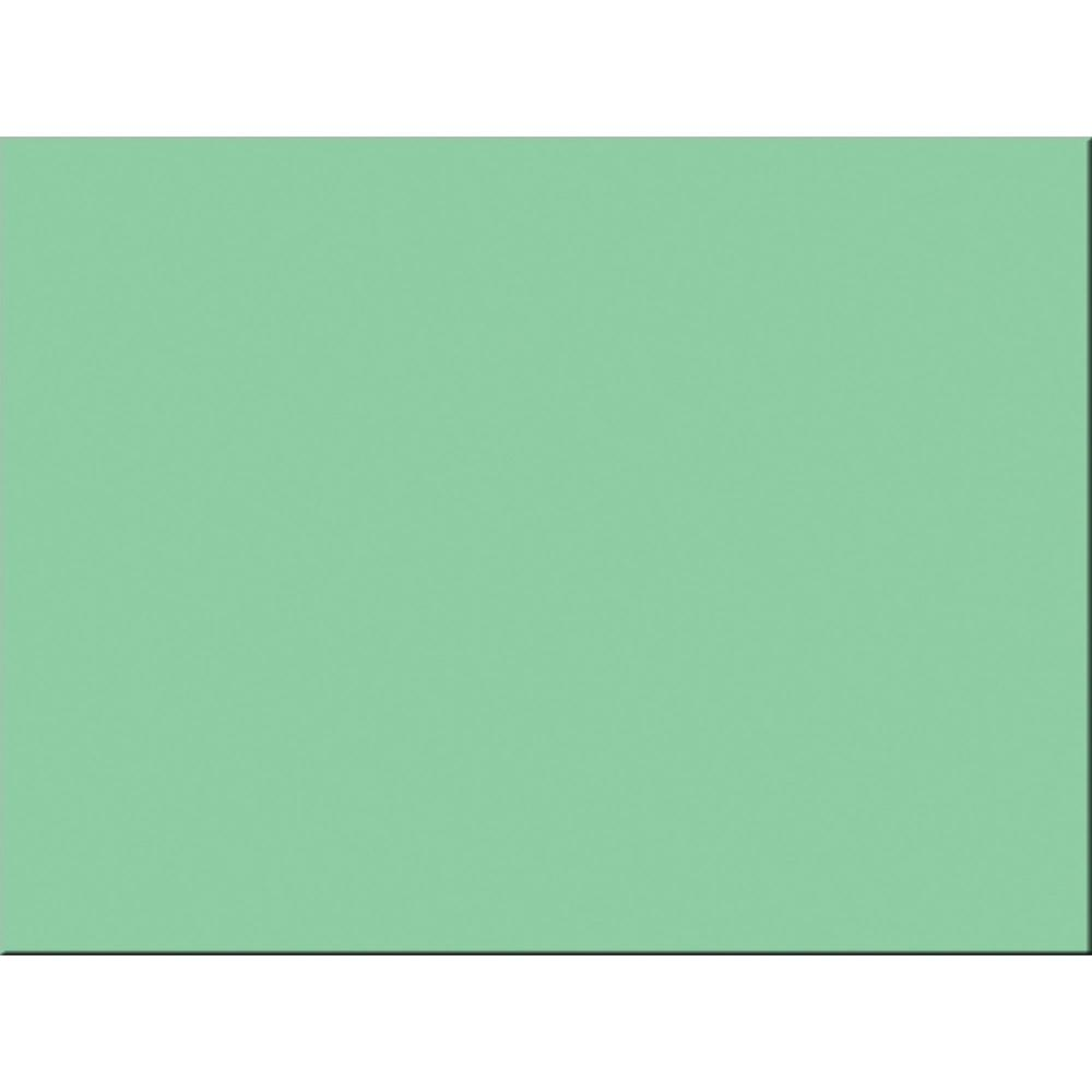 """Tru-Ray Construction Paper - Project - 24"""" x 18"""" - 50 / Pack - Light Green - Sulphite. Picture 1"""