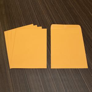 "Business Source Kraft Gummed Catalog Envelopes - Catalog - #10 1/2 - 9"" Width x 12"" Length - 28 lb - Gummed - Kraft - 250 / Box - Kraft. Picture 7"