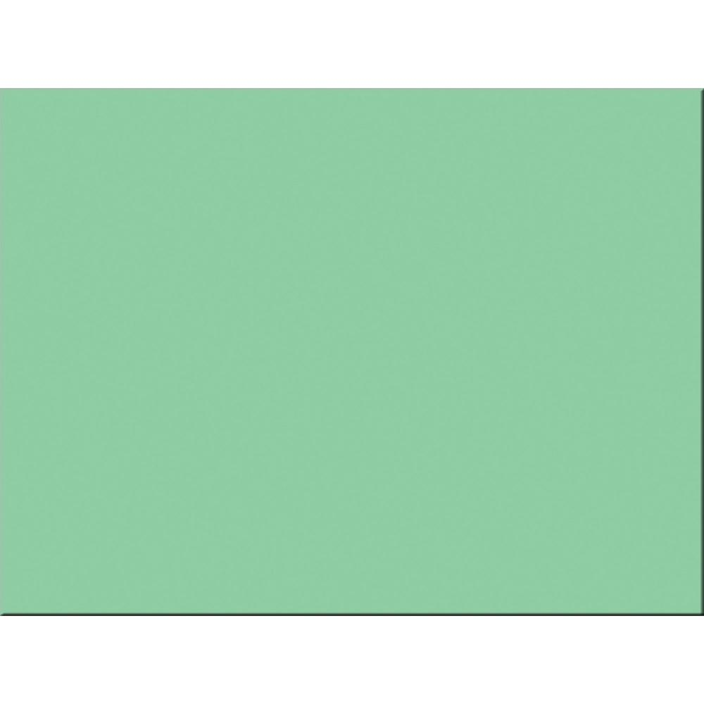 """Tru-Ray Construction Paper - Project - 24"""" x 18"""" - 50 / Pack - Light Green - Sulphite. Picture 2"""