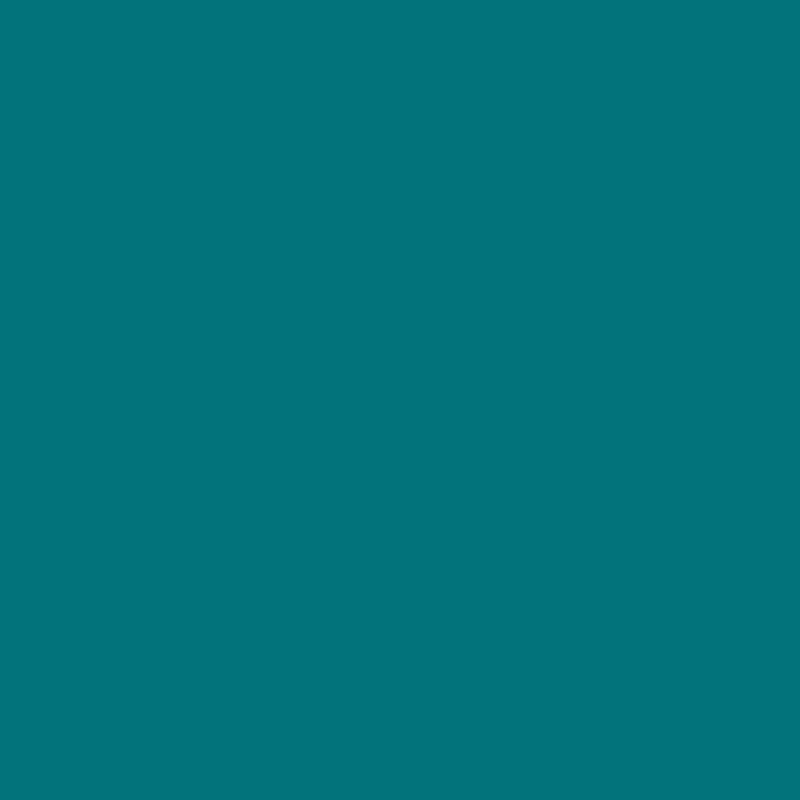 """Berries Adult Height Color Edge Octagon Table - Laminated Octagonal, Teal Top - Four Leg Base - 4 Legs - 1.13"""" Table Top Thickness x 48"""" Table Top Diameter - 31"""" Height - Assembly Required - Powder Co. Picture 3"""