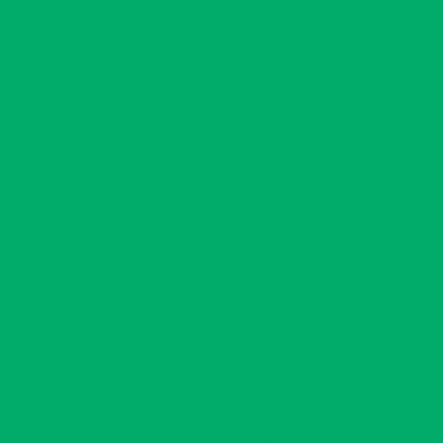 "Rainbow Accents Fold-n-Lock Storage Shelf - 35.5"" Height x 96"" Width x 15"" Depth - Green - Hard Rubber - 1Each. Picture 2"