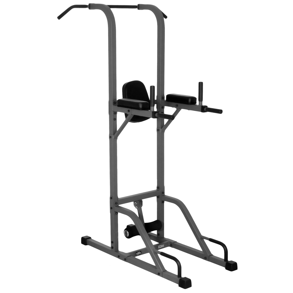 Vkr vertical knee raise with dip and pull up station power