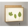 Whitney Brothers Wall Mount Light Box