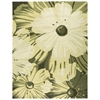 """Fantasy Rectangle Rug By, Herb, 8' X 10'6"""""""