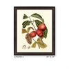 American Giclee Painting With Anti-Glare Glass, Color Refer To The Catalog And Web.