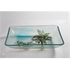 "Tempered Glass 1/2"" Thick, 16.1""X22.4, 4.3"" Height Matching Chrome Pop-Up Drain And Mounting Ring, Coconut Tree"