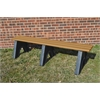 Frog Furnishings 4 ft. Cedar Sport Bench