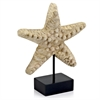 Estrella Starfish on Stand