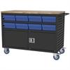 Akro-Mils Lvrd Cart w/Locking Doors 16 AkroDrawers, Black/Blue