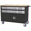 Akro-Mils Lvrd Cart w/Locking Doors 16 AkroDrawers, Black/Clear