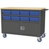 Lvrd Cart w/Locking Doors 16 AkroDrawers, Gray/Blue