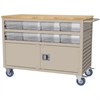 Lvrd Cart w/Locking Doors 16 AkroDrawers, Putty/Clear