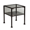 Southern Enterprises Terrarium Display End Table