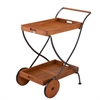 Southern Enterprises Lucia Outdoor Serving Cart