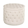 Southern Enterprises Baronne Tufted Storage Ottoman