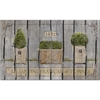 "Apache Mills French Garden Topiaries 18"" x 30' Mat"