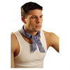 OccuNomix Miracoll Bandana, Blue Denim