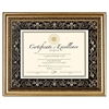 DAX Florence Document Frame with Mat, Gold, Plastic, 11 x 14, 8 1/2 x 11