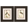 Propac Images 1266 Water Birds, Pack of 2