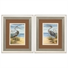 Propac Images 1272 Shore Bird, Pack of 2
