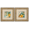 Propac Images 1609 Bella Fiori, Pack of 2
