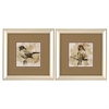 1666 Bird Sketch, Pack of 2