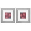 Propac Images 1685 Dianthus, Pack of 2