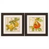 Propac Images 2146 Rustic Fruit, Pack of 2