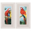 Propac Images 2826 Parrot, Pack of 2