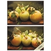 Propac Images 3681 Green Apples, Pack of 2