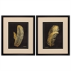 Propac Images 3731 Feather On Black, Pack of 2