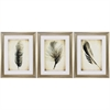 Propac Images 3880 Feather On The Wind, Pack of 3