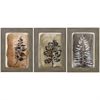 3973 Sepia Leaves Ii, Pack of 3