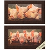 Propac Images 4967 Pig Big, Pack of 2