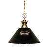 1 Light Pendant Polished Brass