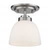 1 Light Flush Mount Brushed Nickel