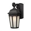 Z-Lite Outdoor Wall Light Black
