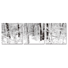 Winter Woods Mounted Photography Print Triptych Black/White