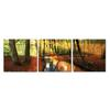 Forest Oasis Mounted Photography Print Triptych Multi