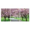 Spring in Bloom Mounted Photography Print Triptych Multi